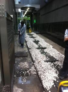 玉砂利清掃
